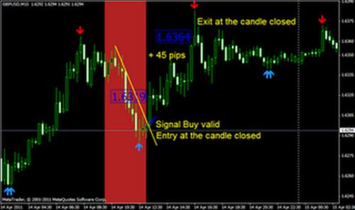Cara trading forex agar selalu profit